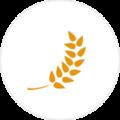 Medium_agriculture